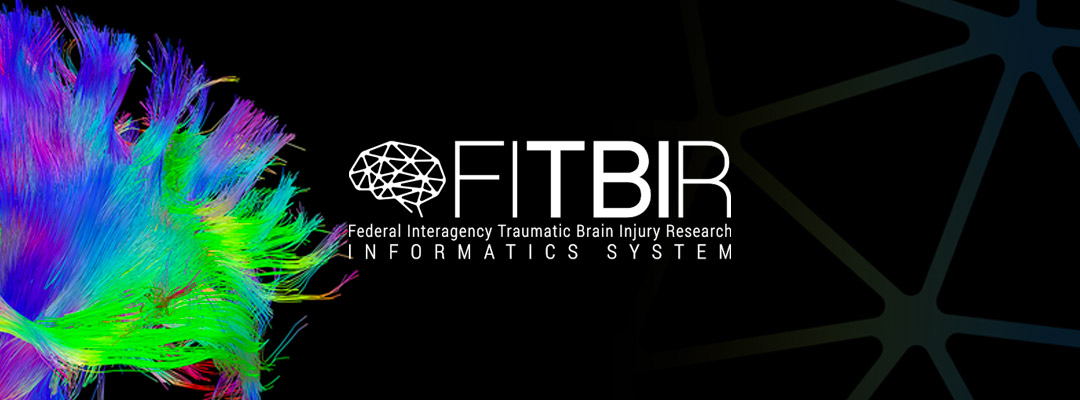 How to Easily Submit Your TBI Research Data to FITBIR
